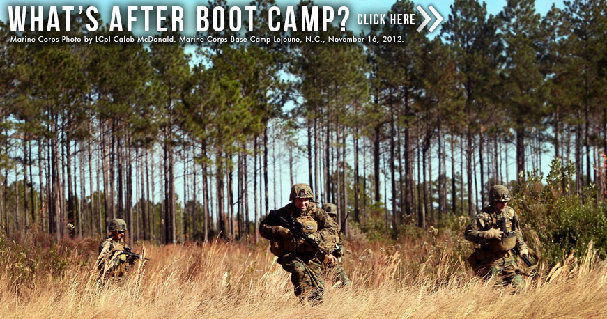Whats After Boot Camp Overview